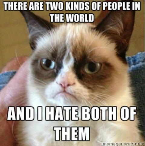 grumpy-cat-hates-both-kind-of-people